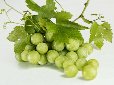 New Research Says Grapes May Help Protect the Eyes