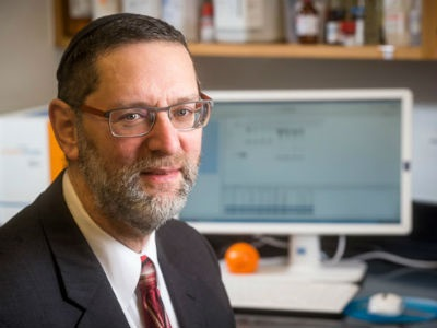 UAB Researchers Find Rod Cell Protein May Accelerate Retinal Degeneration