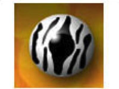 Zebra from CIBA Vision