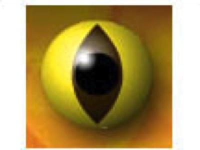 Cat Eye from CIBA Vision