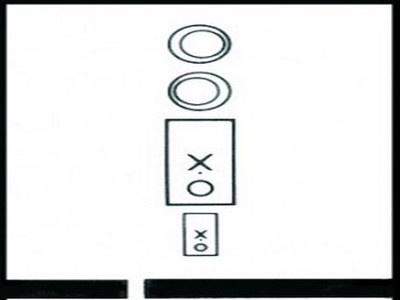 Basic Fusion Vectogram from Stereo Optical Company, Inc.